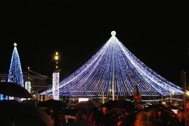 Canopy Lights Up Dec 1st!